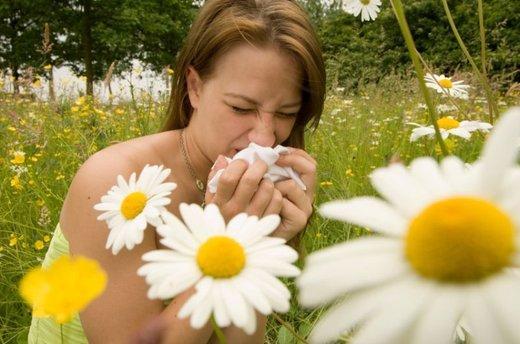 Alergije odraslih