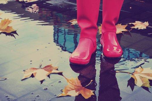 Gumijasti škornji