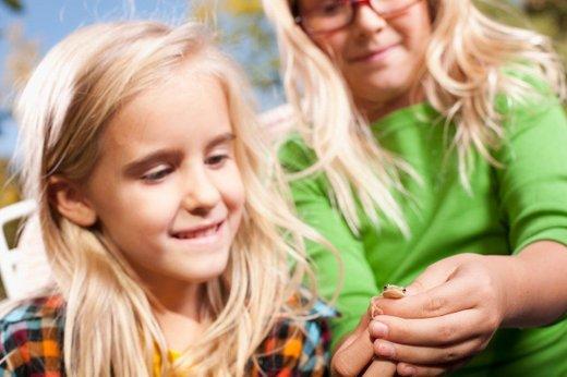 Otrok in žaba