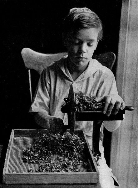 Zgodovina otroškega dela v slikah - 7