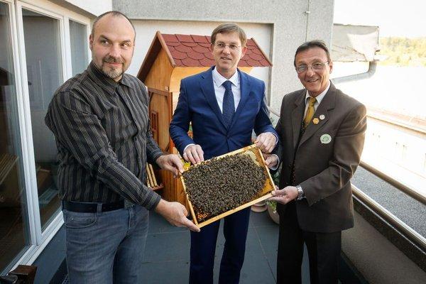Čebele na vladi