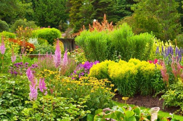 Bujen vrt