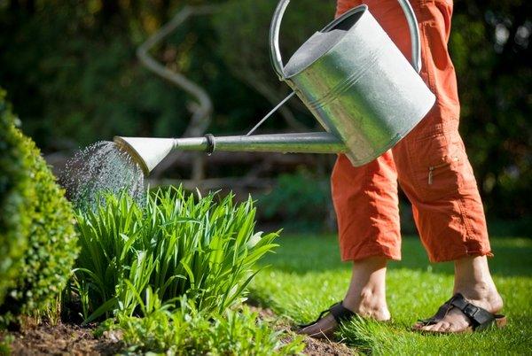 Zalivanje vrta