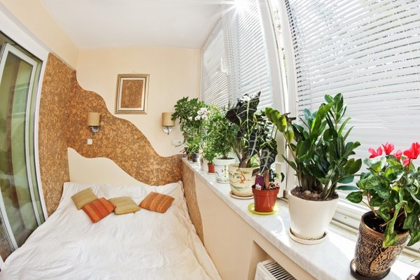 Sobne rastline v spalnici