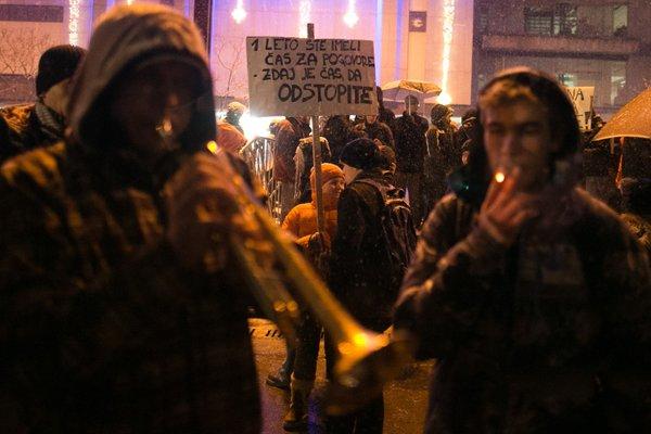 Mirni protesti pred državnim zborom - 6