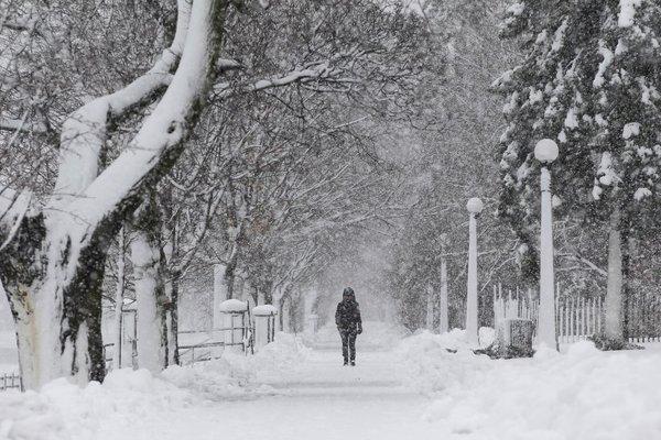 Sneženje v Ottawi