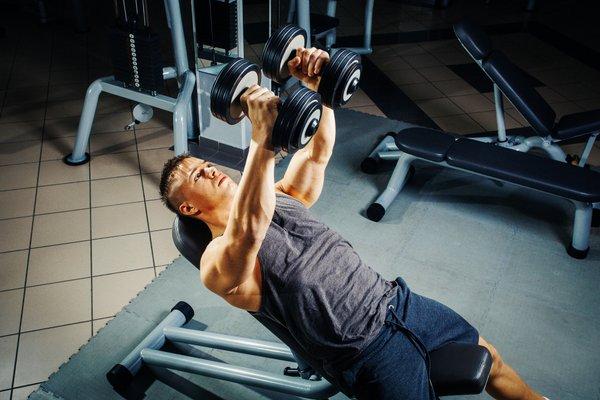 Prsne mišice - 2