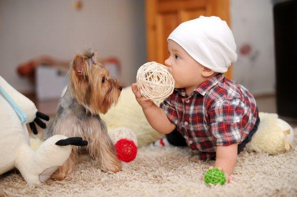 Pes in otrok
