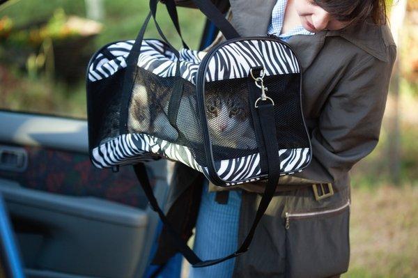 Ženska z mačjim transporterjem in mačko
