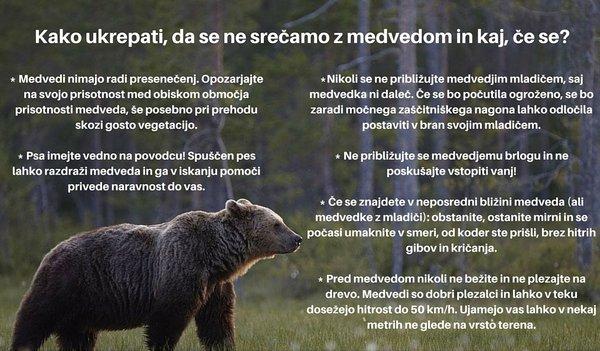 Medvedi ukrepi