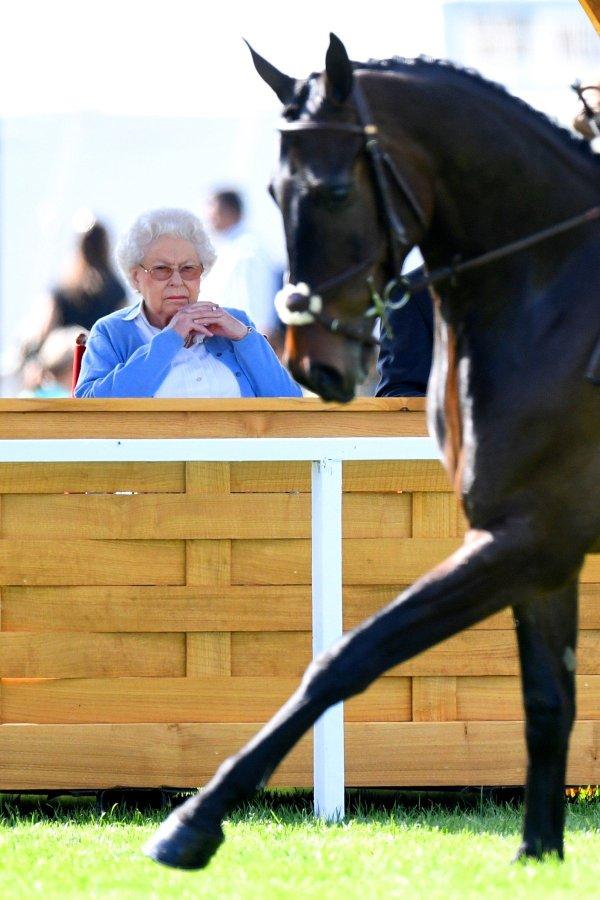 kraljica elizabeta royal windsor horse show