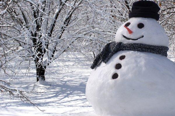 Rezultat iskanja slik za zimske radosti na snegu