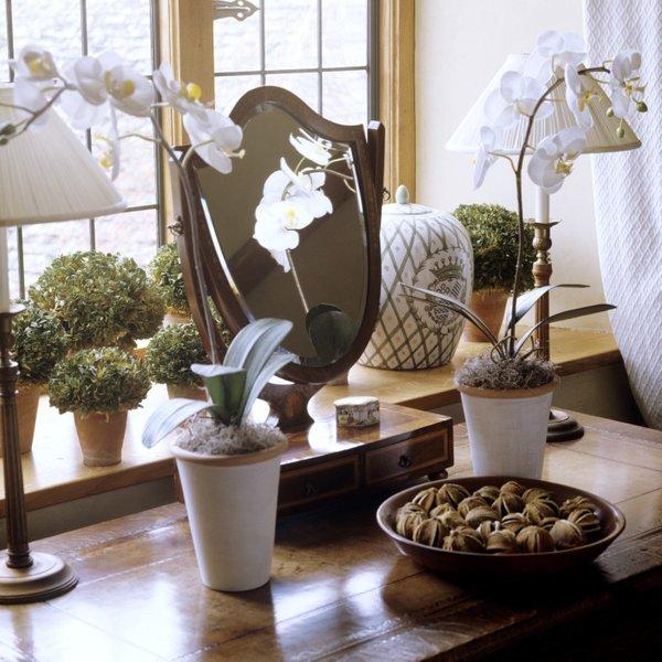 Orhideje na podeželski način