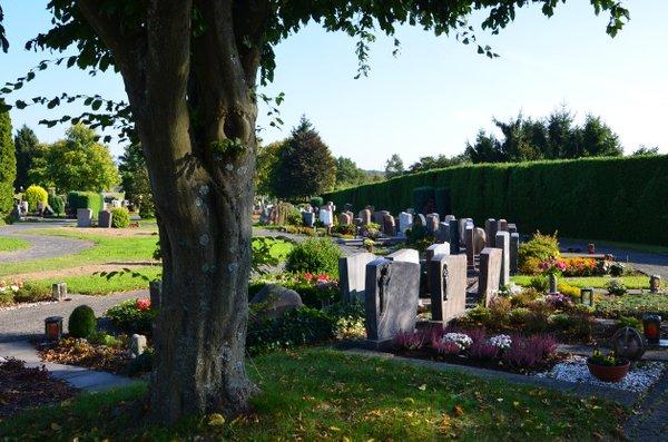 jesenske zasaditve rož na grobovih - 3