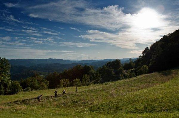 Kmetija 2011 - 3