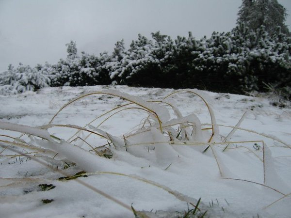 Sneg na Vršiču - 7