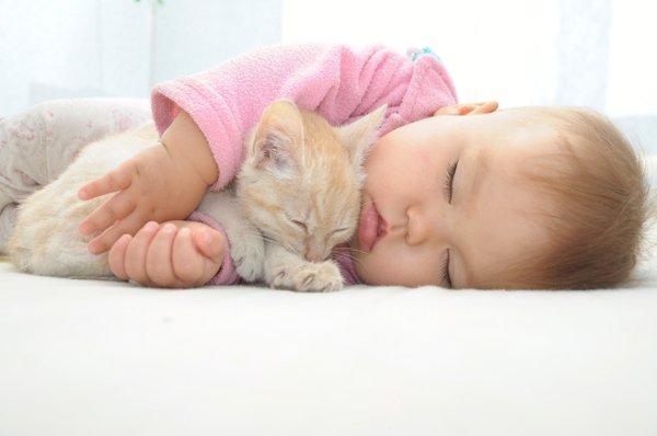 otrok in mačka
