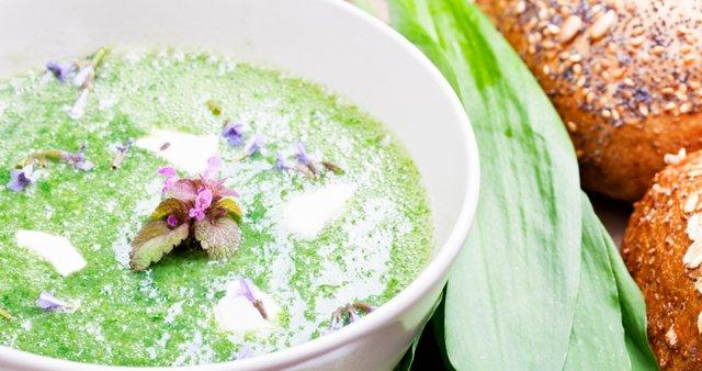 Zelena juha iz divjih užitnih rastlin