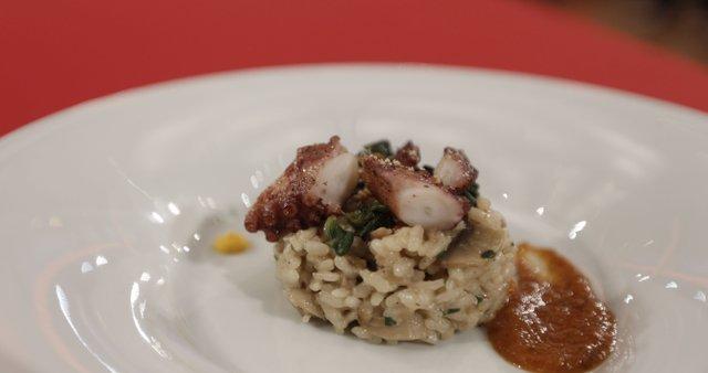 Hobotnica, riž z gobami, paradižnikova omaka