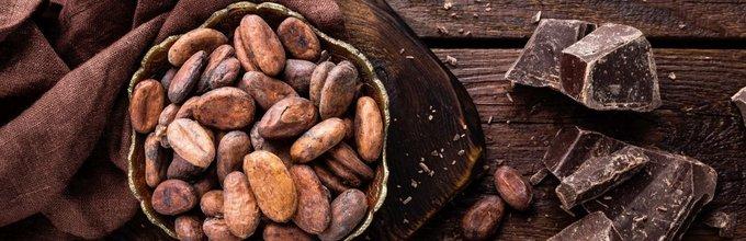 temna čokolada in kakavova zrna