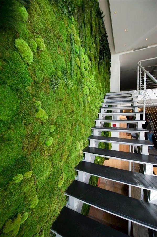 Zelena, stena