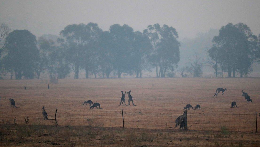 Onesnaženost zraka v Canberri