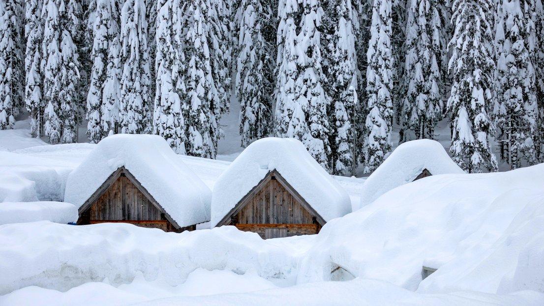 Zelo debela snežna odeja na Pokljuki-4