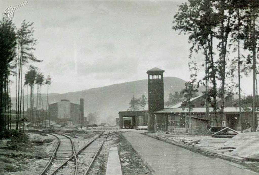 Ko je bilo konec letalske tovarne, je nastal TAM. Predlogi za razvoj avtomobilske industrije v Mariboru so se sicer pojavili že prej – konec leta 1945.