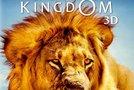 Začarano kraljestvo