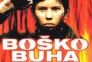 Boško Buha