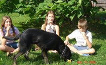 Otroci v družbi nepogrešljivih - Lole in Lučk 2