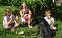 Otroci v družbi nepogrešljivih - Lole in Lučk 3
