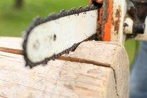 V nesrečah pri spravilu lesa in podiranju drevesa poškodovani dve osebi