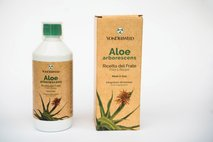 Aloe vera - 5
