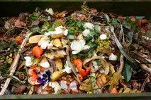 Slovenec je lani zavrgel povprečno 68 kilogramov hrane