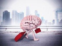 Beg možganov: Ko investicija postane strošek za državo