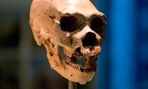 Znanstveniki odkrili skrivnostno populacijo prednikov človeka