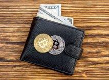 Nemec ima 7000 bitcoinov, ki so vredni 197 milijonov evrov, a ne more do njih