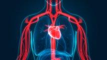 Naravno znižajte previsok krvni tlak