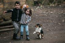 REPORTAŽA: Romska naselja na Dolenjskem