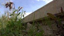 Končno ugotovili: zid v Pesnici ni dovolj visok, bo DVK razveljavila razpis?