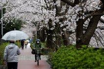 Ne, Japonska vam ne bo plačala počitnic