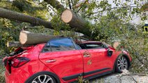V več evropskih državah težave zaradi silovitega vetra