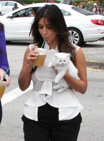 Kim Kardashian z muco v naročju - 1