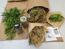 Policisti 26-letniku zasegli kilogram konoplje