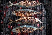 5 nasvetov za božanske ribe na žaru