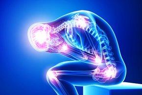 Zmanjšuje bolečine v sklepih, spodbuja prebavo in ščiti imunost