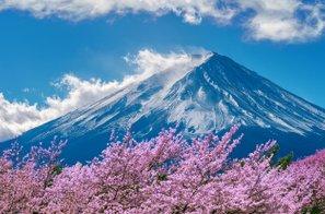 Vremenska napoved: mi napovedujemo sneg, Japonci pa češnje