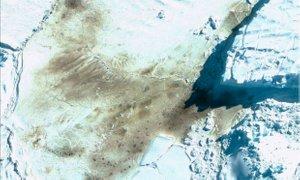 Satelitski posnetki odkrili 11 novih kolonij ogroženih cesarskih pingvinov