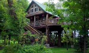 Sanjsko hišo na drevesu spremenila v turistično atrakcijo